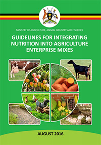 cover of guidelines