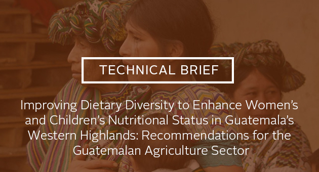 Technical Brief: Improving Dietary Diversity to Enhance Women's and Children's Nutritional Status in Guatemala's Western Highlands: Recommendations for the Guatemalan Agriculture Sector. Photo of three women in Guatemala with a baby