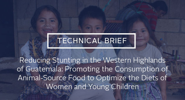 Technical brief: Reducing Stunting in the Western Highlands of Guatemala: Promoting the Consumption of Animal-Source Food to Optimize the Diets of Women and Young Children. Photo of three smiling children in Guatemala.