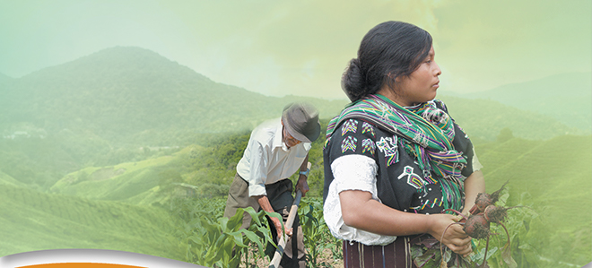 people farming in the hills