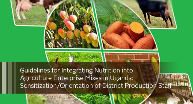 Guidelines for Integrating Nutrition into Agriculture Enterprise Mixes in Uganda: Sensitization/Orientation of District Production Staff. image of publication cover