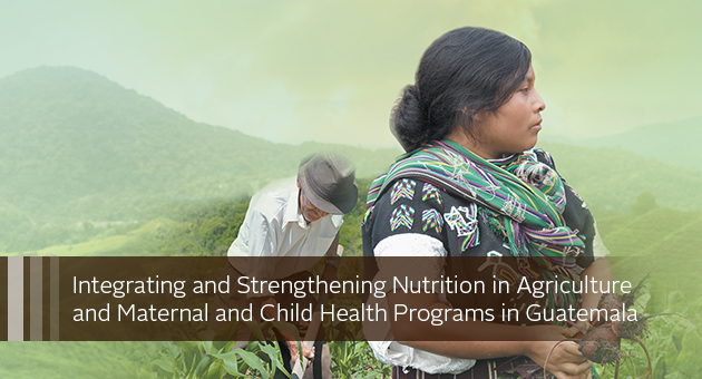 Integrating and Strengthening Nutrition in Agriculture and Maternal and Child Health Programs in Guatemala: A Report on FANTA Activities from 2011 to 2017. photo of people farming