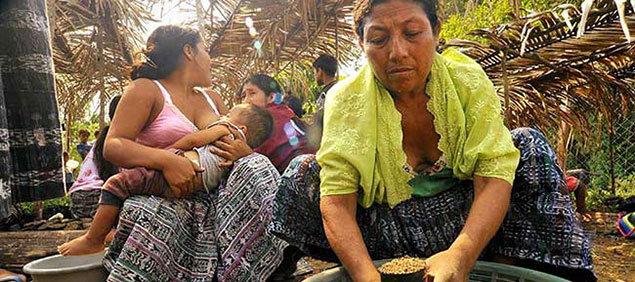 © 2009 Todd Shapera, Courtesy of Photoshare. Women volunteer at a seed nursery near their village in a deforested region of the Guatemalan Highlands. Many seedlings are Guama, a fast growing species that helps provide shade for their corn crops in the mountains surrounding their communities, and helps augment depleted fuel wood supplies.