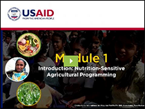 Screenshot of first module of Nutrition-Sensitive Agricultural Programming course
