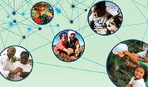 interconnected scenes of multisectoral nutrition