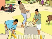illustration of villagers transferring corn