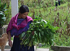 woman holding greens